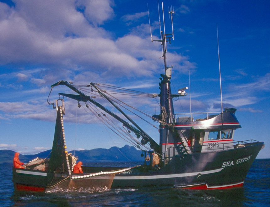 The Sea Gypsy prepares to roll a bag of pink salmon aboard in SE Alaska
