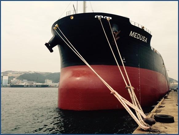 Diana Shipping's Medusa