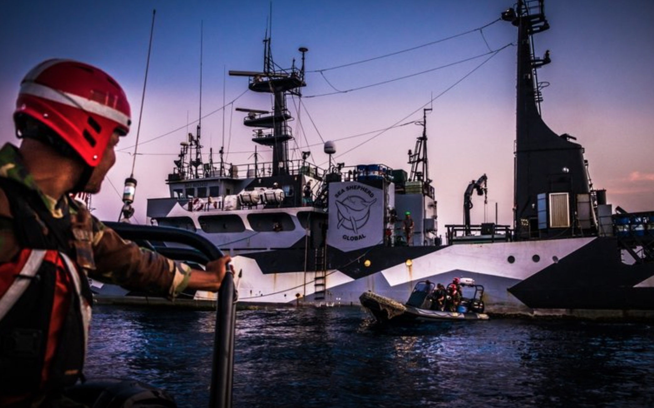 Image: Melissa Romao/Sea Shepherd