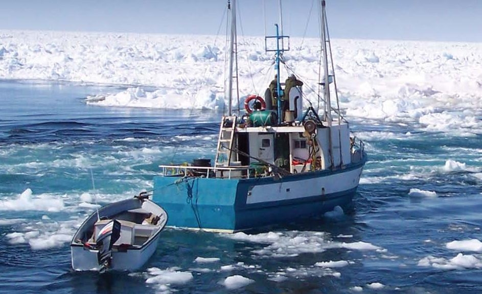 Photo: Canadian Sealers Association
